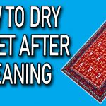 how to dry carpet after cleaning