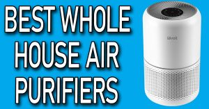 Best Whole House Air Purifiers